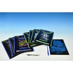 Škrabací obrázek stříbrný/duhový asst 8 druhů 19x24cm