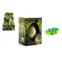 Vejce líhnoucí a rostoucí zvířátko plaz v krabičce 8x10cm 12ks v boxu
