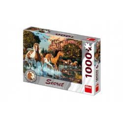 Puzzle Koně 15 skrytých detailů 1000 dílků  66x47cm v krabici 32x23x7cm