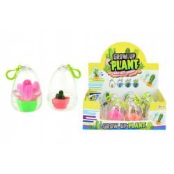 Rostoucí vejce kaktus plast 9cm asst mix druhů 12ks v boxu