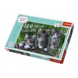 Puzzle Koťata 260 dílků 60x40cm v krabici 40x27x4cm