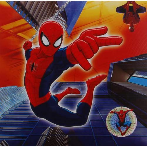 Fotoalbum B-46200B Disney 04 Spiderman