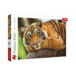 Puzzle Portrét tygra 500 dílků 48x34cm v krabici 40x27x4,5cm